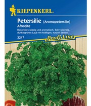 Peterselie 'Afrodite'