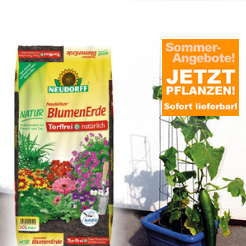 Tuinaccessoires a-z