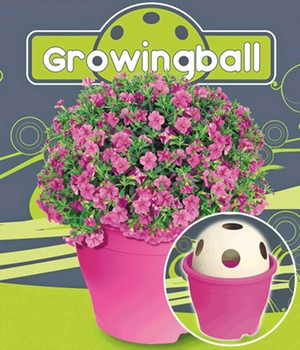 Growing Ball® 'roze'