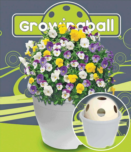 Growing Ball® 'wit'