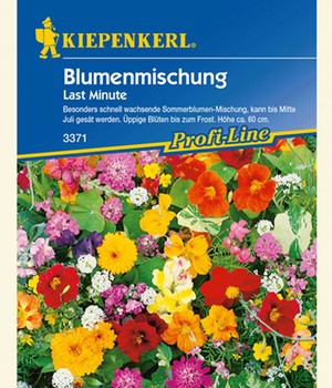 Bloemen mix 'Last Minute'