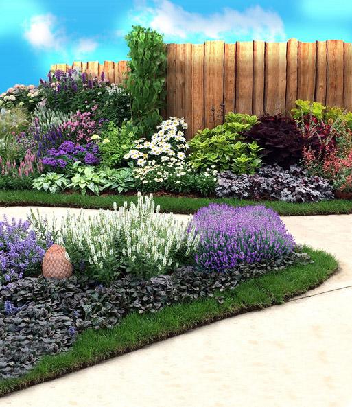Vaste Planten Voor In De Tuin.Vaste Planten Assortiment Blauw Witte Tuin