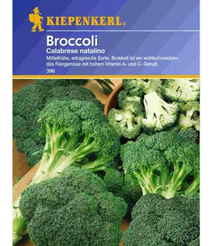 Broccoli 'Calabrais'