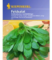 Veldsalade 'Hollandse breedbladig'