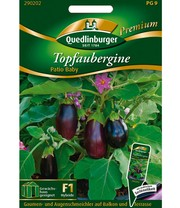 Pot Aubergine 'Patio Baby'