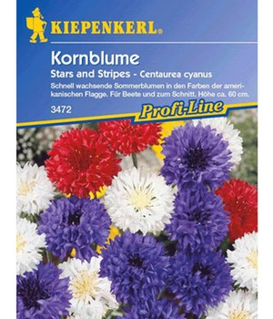 Korenbloem 'Stars and Stripes'