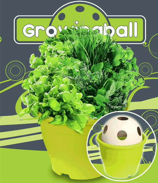 Growing Ball® 'groen'